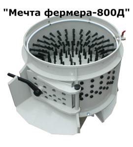 800D name