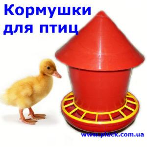 Kormishki_ptisi_menu