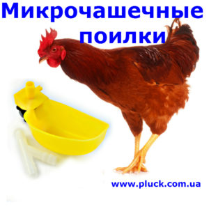 micrichashki_menu