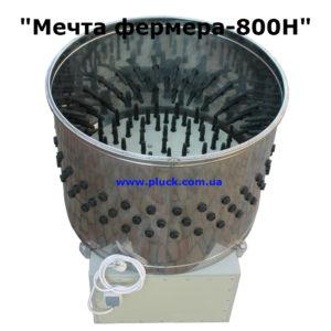 800N-2 site